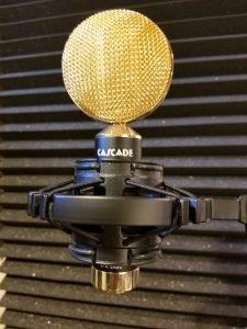 Ribbon Microphone - Cascade Fathead II 2
